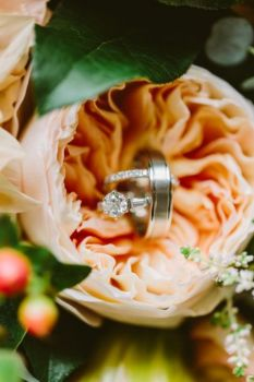 Picturesque Wedding Rings