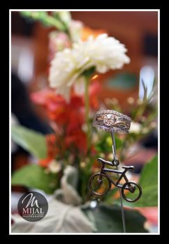 Ring With Bike Decor